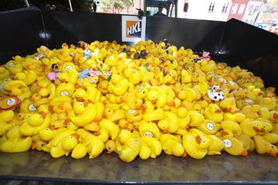 Auch dieses Jahr gehen die Enten wieder für einen guten Zweck an den Start. Archivfoto: JW.