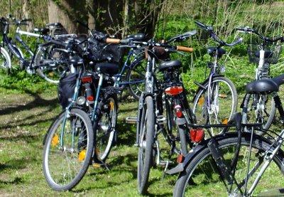 Am Sonntag besteht letztmalig in diesem Jahr die Möglichkeit, die Fahrradprüfung für das Sportabzeichen abzulegen.