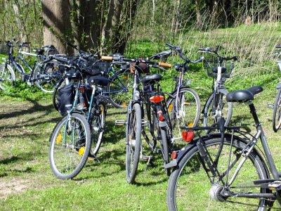 Am Samstag startet die Fahrradtour des ADFC an der Gedenkstätte Lutherkirche. Foto: MK