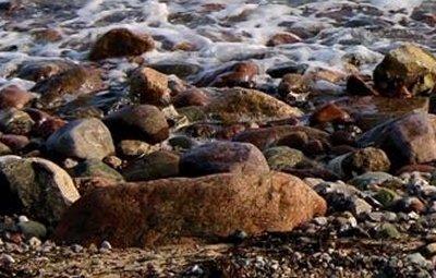 Angeboten wird eine kompetente Bestimmung der mitgebrachten Mineralien, Fossilien und Gesteinen.