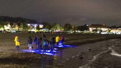 Schutzbrillen und UV-Lampen werden gegen Pfand ausgeliehen. Foto: GeoPark N. Steinreich