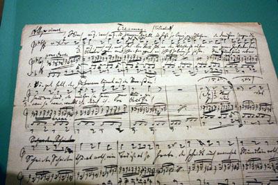 Die Stadtbibliothek zeigt eine Ausstellung zu Brahms. Foto: TD/Archiv