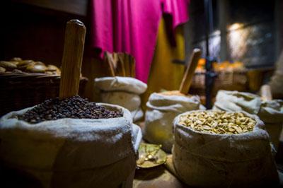 Der Vortrag beschäftigt sich mit dem Handel asiatischer und mediterraner Früchte in der Hanse. Foto: Olaf Malzahn