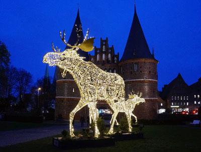 Die Elche kehren Anfang der Woche zurück nach Travemünde. Fotos: JW