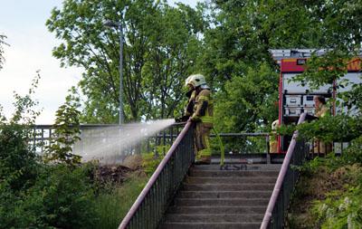 Vermutlich durch eine Zigarettenkippe kam es an der Marienbrücke zu einem Grasbrand. Foto: Oliver Klink