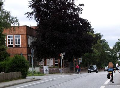Im Bereich des Mönkhofer Weges werden fünf Haltestellen barrierefrei umgebaut. Foto: JW/Archiv