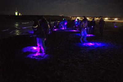 Das Schwarzlicht zeigt viele interessante Dinge am Strand, mit etwas Glück auch Bernstein. Fotos: Karl Erhard Vögele
