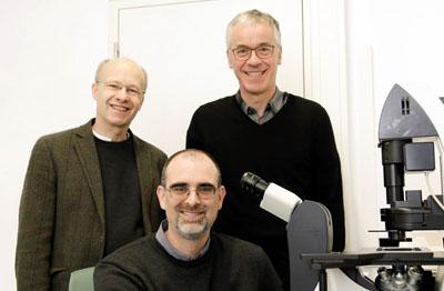 Prof. Gereon Hüttmann, Prof. Peter König und Prof. Markus Schwaninger arbeiten bisher mit konventionellen Licht-Mikroskopen wie hier auf dem Bild, die eine Bildauflösung von 0,2 Mikrometer (µm) ermöglichen. Foto: René Kube/Uni