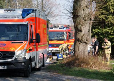 Die Mofa-Fahrerin stürzte an einer Baumwurzel und wurde schwer verletzt. Foto: Oliver Klink