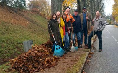 Freiwillige entfernen das Laub, damit sich die Moniermotte nicht weiter ausbreitet. Foto: Gem. Verein